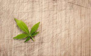 Marijuana Addiction Treatment Los Angeles